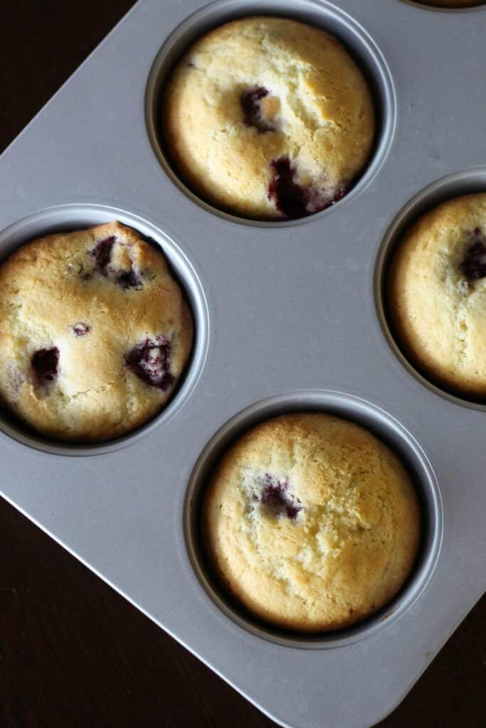 Blackberrymuffins2