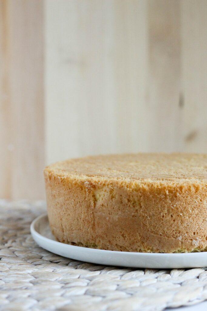 Vanilla Sponge Cake 3