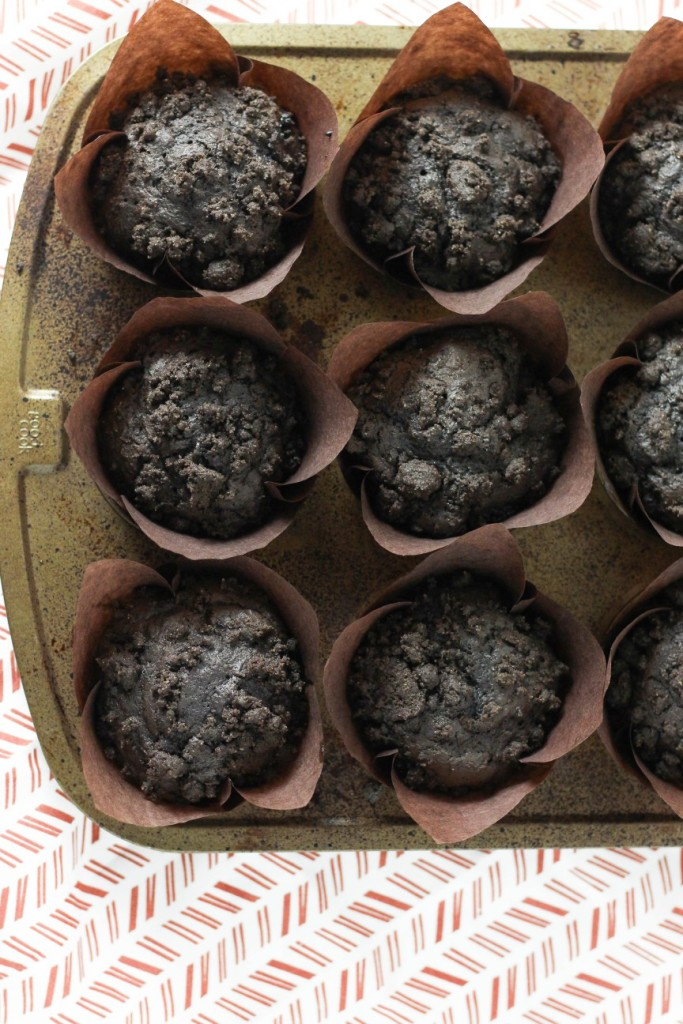 Chocolate Blueberry Muffins 2